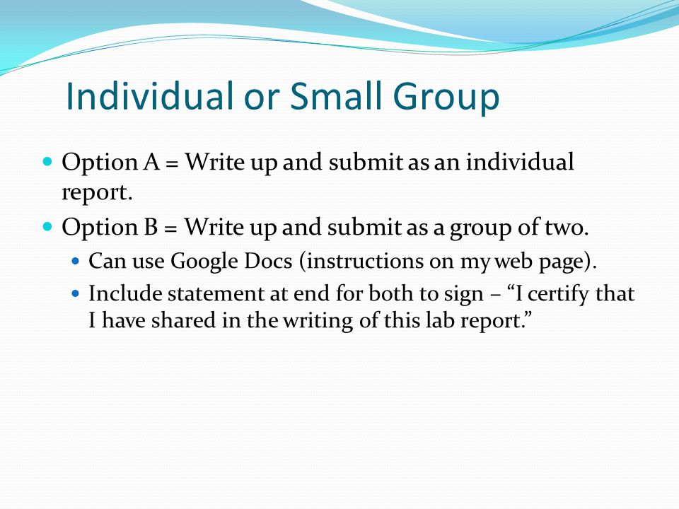 Individual or Small Group Option A = Write up and submit as an individual report.