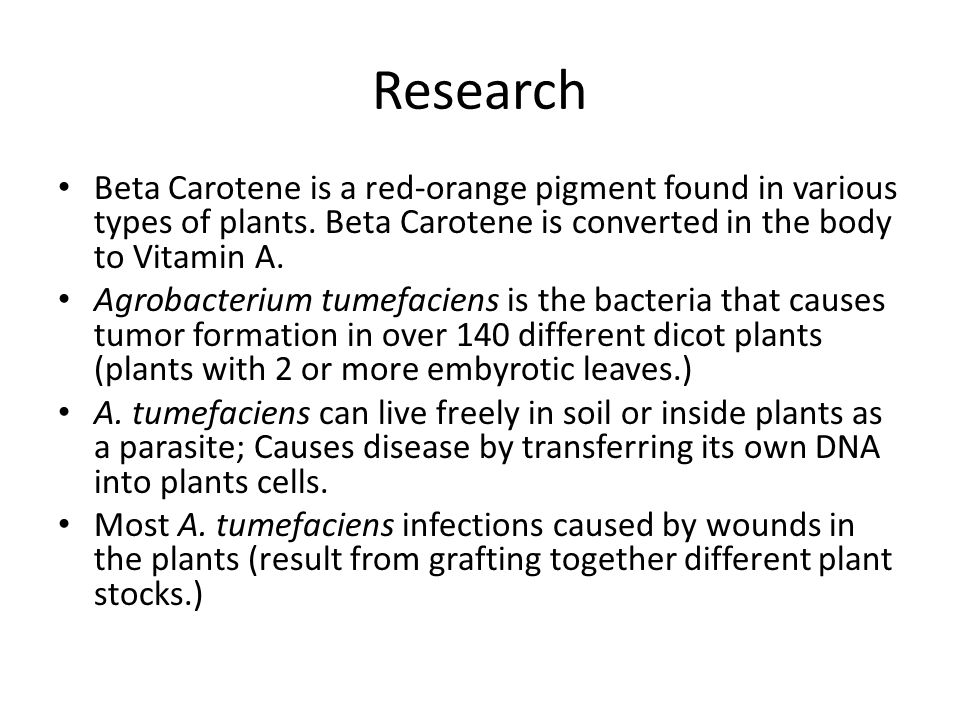 Research Beta Carotene is a red-orange pigment found in various types of plants. Beta Carotene is converted in the body to Vitamin A. Agrobacterium tu