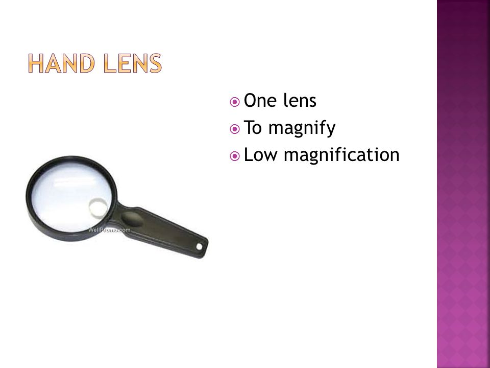  One lens  To magnify  Low magnification