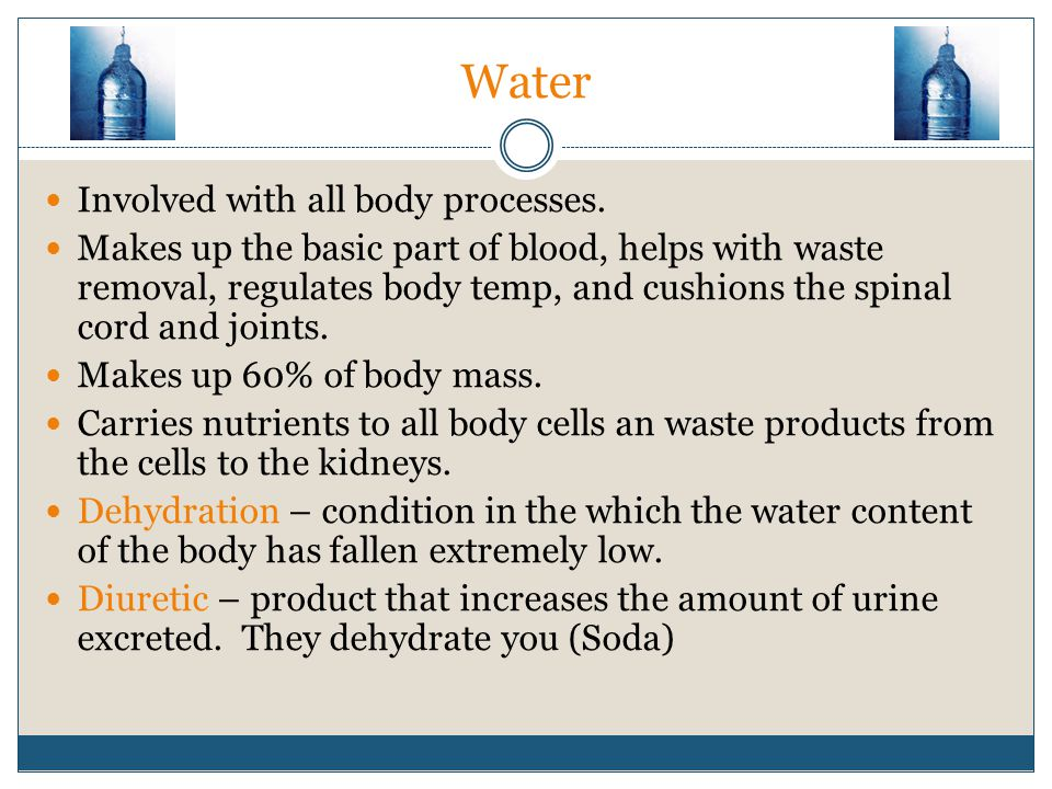 Water Involved with all body processes. Makes up the basic part of blood, helps with waste removal, regulates body temp, and cushions the spinal cord