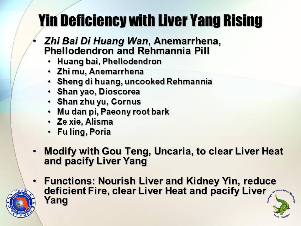 Zhi Bai Di Huang Wan, Anemarrhena, Phellodendron and Rehmannia PillZhi Bai Di Huang Wan, Anemarrhena, Phellodendron and Rehmannia Pill Huang bai, Phel