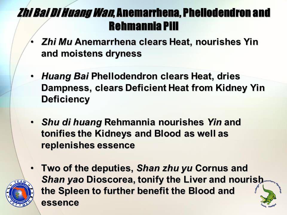 Zhi Bai Di Huang Wan, Anemarrhena, Phellodendron and Rehmannia Pill Zhi Mu Anemarrhena clears Heat, nourishes Yin and moistens drynessZhi Mu Anemarrhe