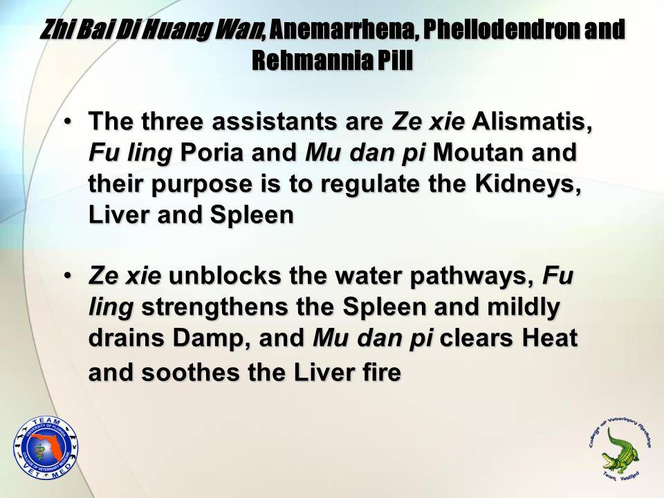 Zhi Bai Di Huang Wan, Anemarrhena, Phellodendron and Rehmannia Pill The three assistants are Ze xie Alismatis, Fu ling Poria and Mu dan pi Moutan and