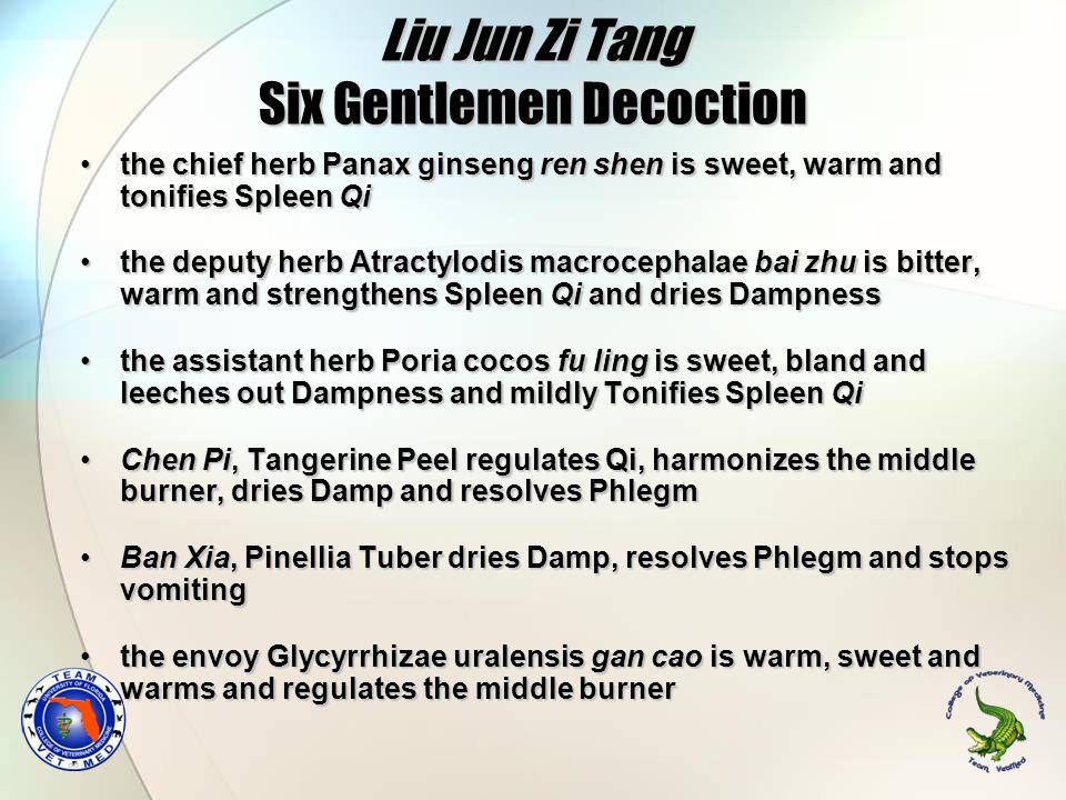 Liu Jun Zi Tang Six Gentlemen Decoction the chief herb Panax ginseng ren shen is sweet, warm and tonifies Spleen Qithe chief herb Panax ginseng ren sh