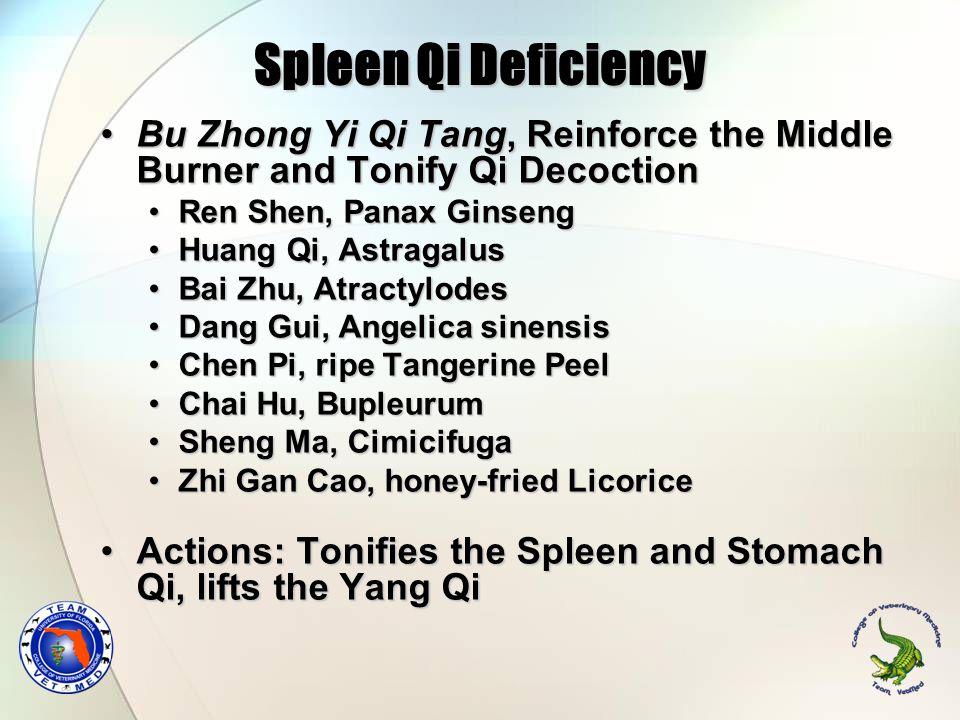 Bu Zhong Yi Qi Tang, Reinforce the Middle Burner and Tonify Qi DecoctionBu Zhong Yi Qi Tang, Reinforce the Middle Burner and Tonify Qi Decoction Ren S