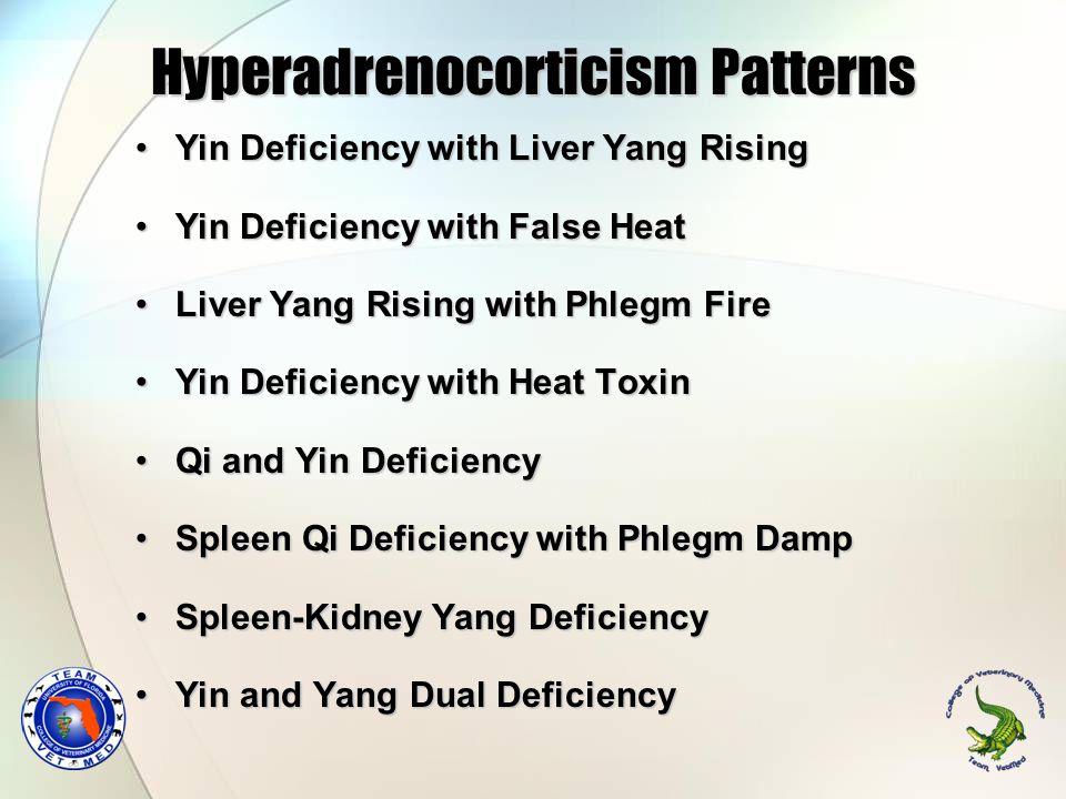 Hyperadrenocorticism Patterns Yin Deficiency with Liver Yang RisingYin Deficiency with Liver Yang Rising Yin Deficiency with False HeatYin Deficiency