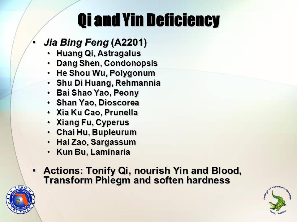 Qi and Yin Deficiency Jia Bing Feng (A2201)Jia Bing Feng (A2201) Huang Qi, AstragalusHuang Qi, Astragalus Dang Shen, CondonopsisDang Shen, Condonopsis