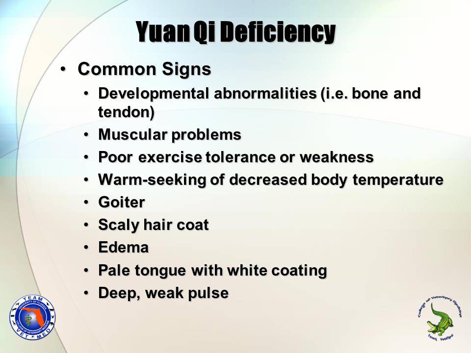 Yuan Qi Deficiency Common SignsCommon Signs Developmental abnormalities (i.e. bone and tendon)Developmental abnormalities (i.e. bone and tendon) Muscu