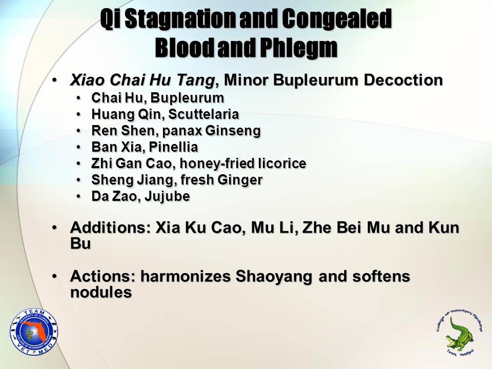 Qi Stagnation and Congealed Blood and Phlegm Xiao Chai Hu Tang, Minor Bupleurum DecoctionXiao Chai Hu Tang, Minor Bupleurum Decoction Chai Hu, Bupleur