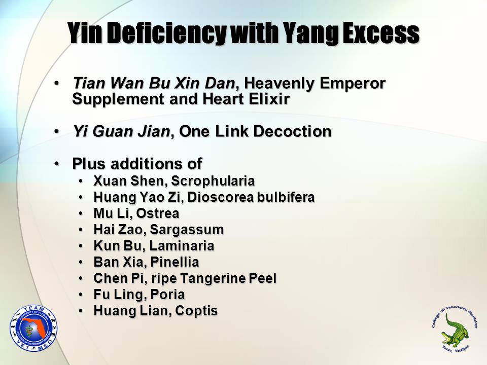 Yin Deficiency with Yang Excess Tian Wan Bu Xin Dan, Heavenly Emperor Supplement and Heart ElixirTian Wan Bu Xin Dan, Heavenly Emperor Supplement and