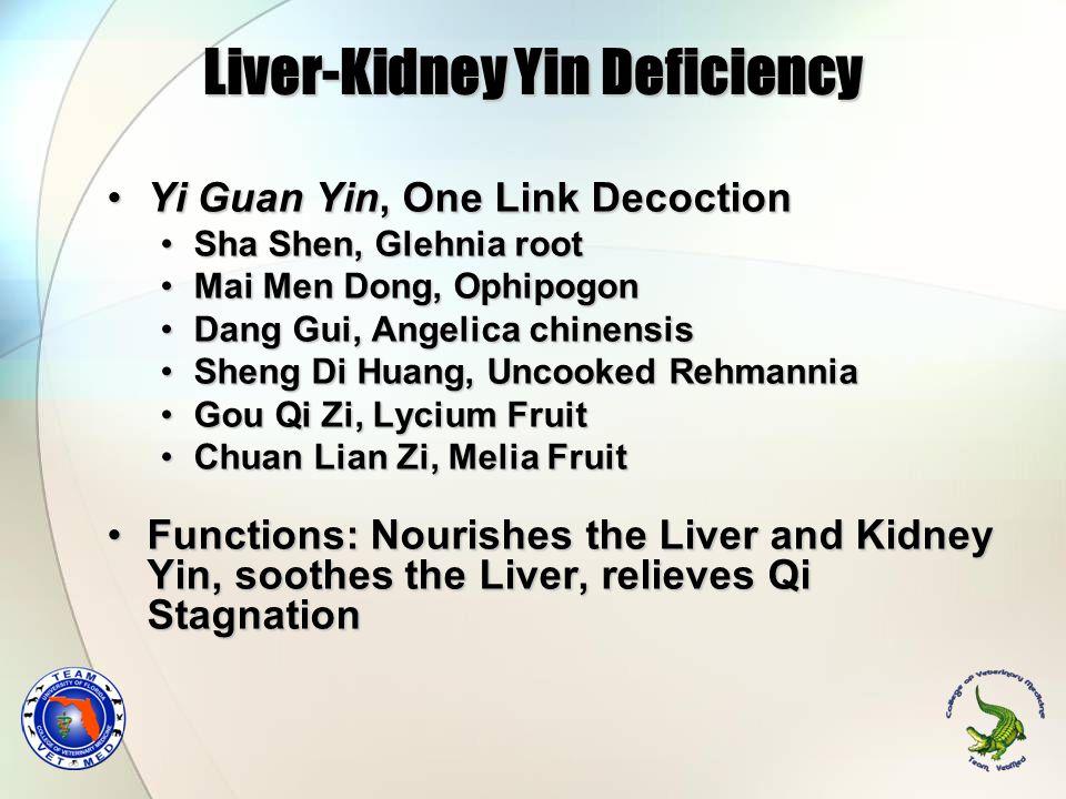Liver-Kidney Yin Deficiency Yi Guan Yin, One Link DecoctionYi Guan Yin, One Link Decoction Sha Shen, Glehnia rootSha Shen, Glehnia root Mai Men Dong,
