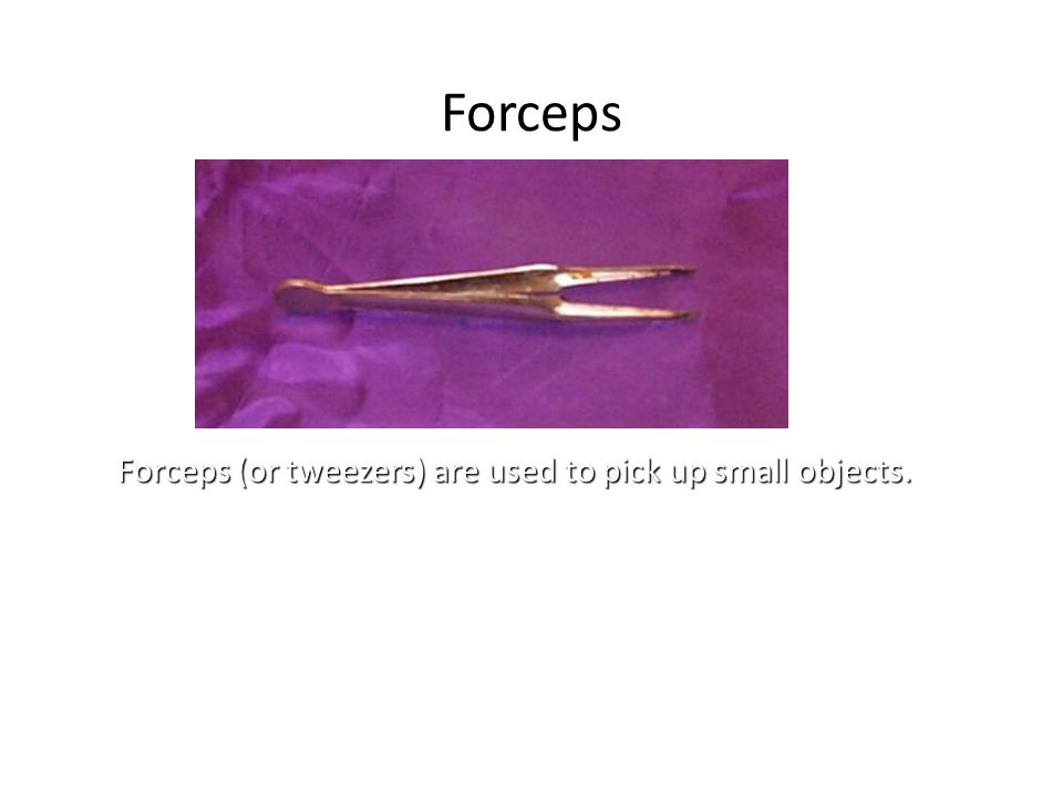 Forceps Forceps (or tweezers) are used to pick up small objects.