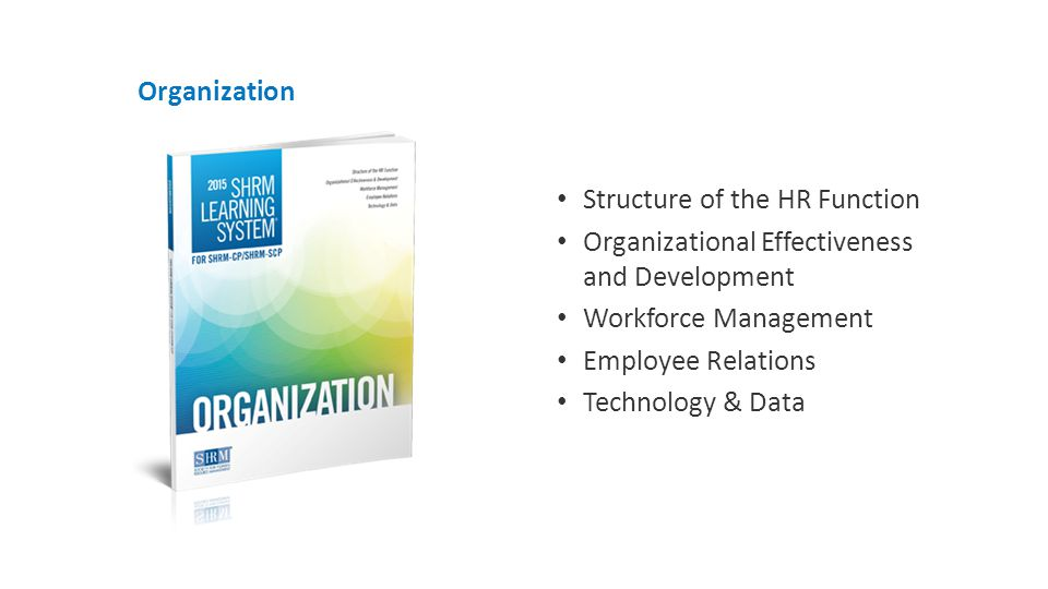Organization Structure of the HR Function Organizational Effectiveness and Development Workforce Management Employee Relations Technology & Data