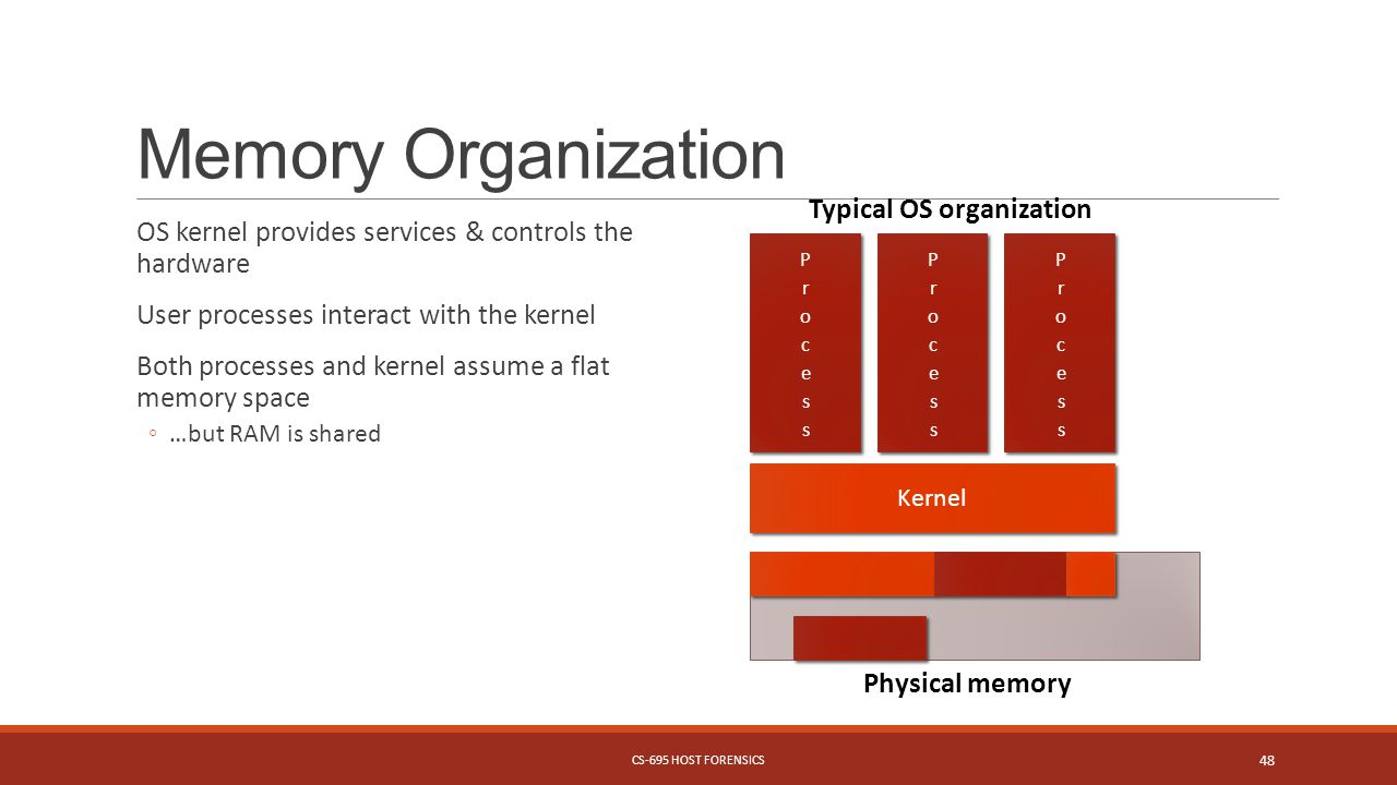 Memory Organization OS kernel provides services & controls the hardware User processes interact with the kernel Both processes and kernel assume a flat memory space ◦…but RAM is shared Kernel Typical OS organization Physical memory CS-695 HOST FORENSICS 48