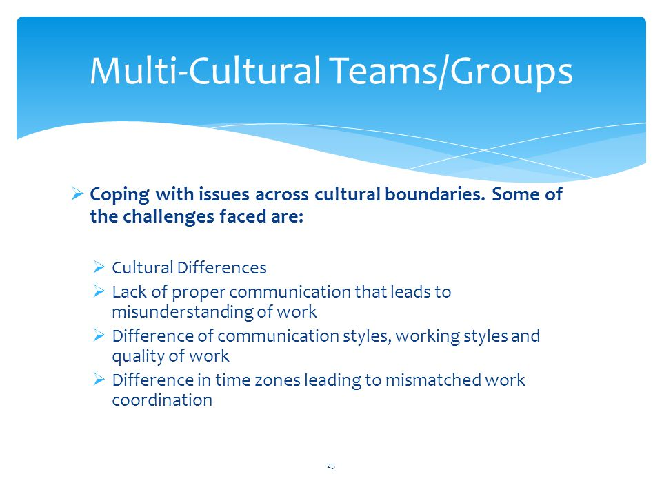  Coping with issues across cultural boundaries. Some of the challenges faced are:  Cultural Differences  Lack of proper communication that leads to