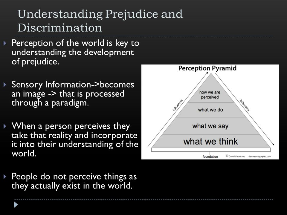 Understanding Prejudice and Discrimination  Perception of the world is key to understanding the development of prejudice.