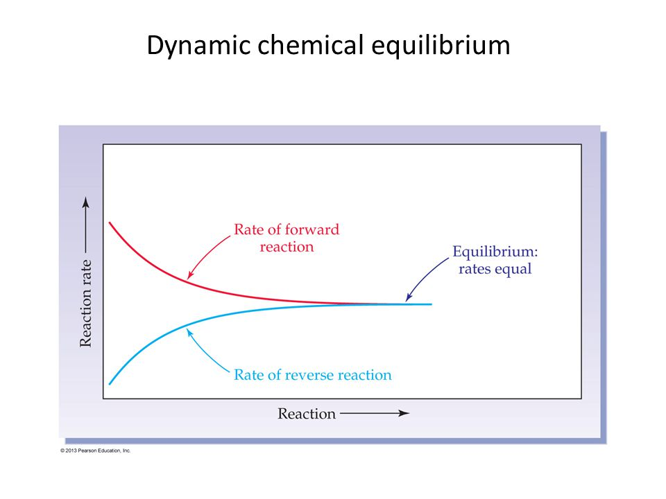 Dynamic chemical equilibrium