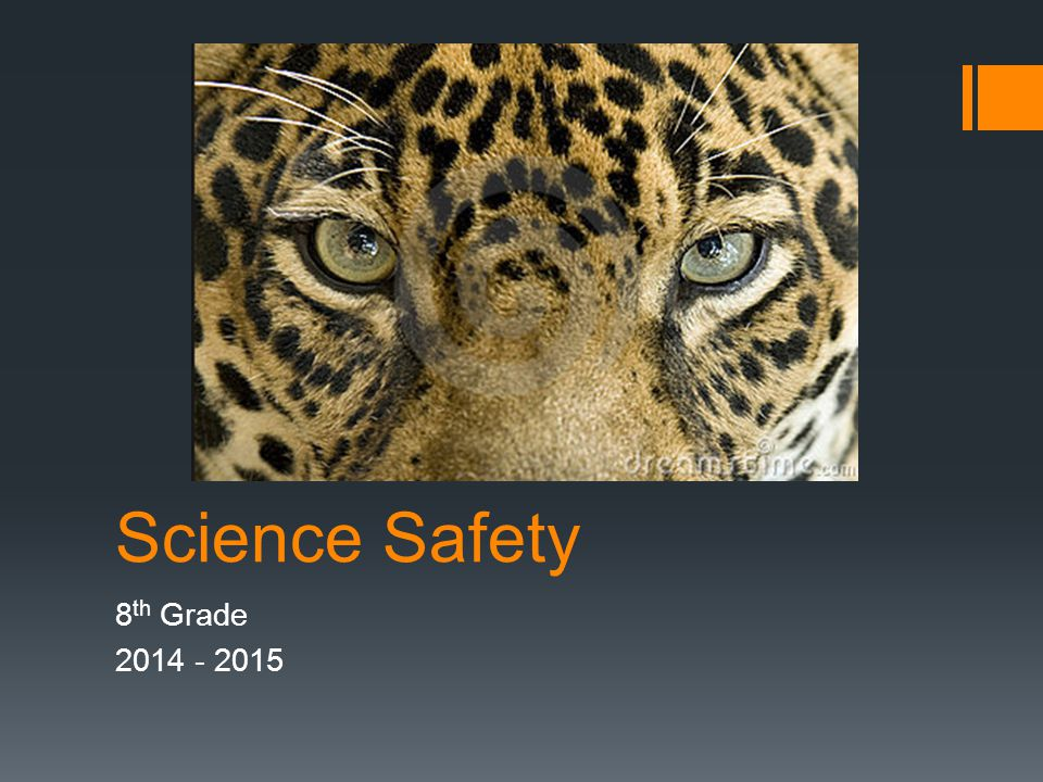 Science Safety 8 th Grade 2014 - 2015