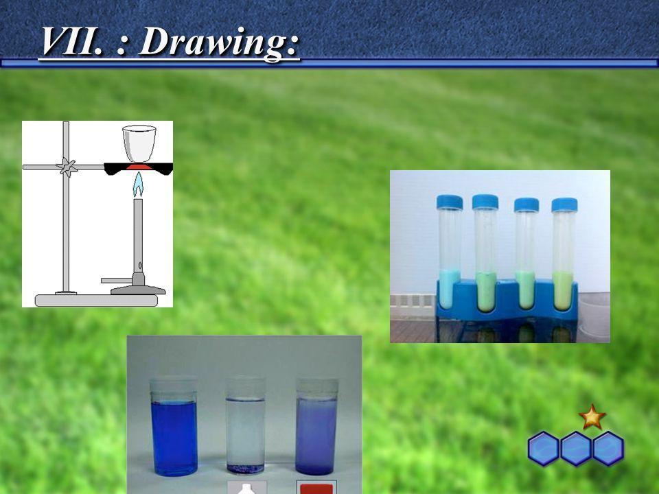 VII. : Drawing: