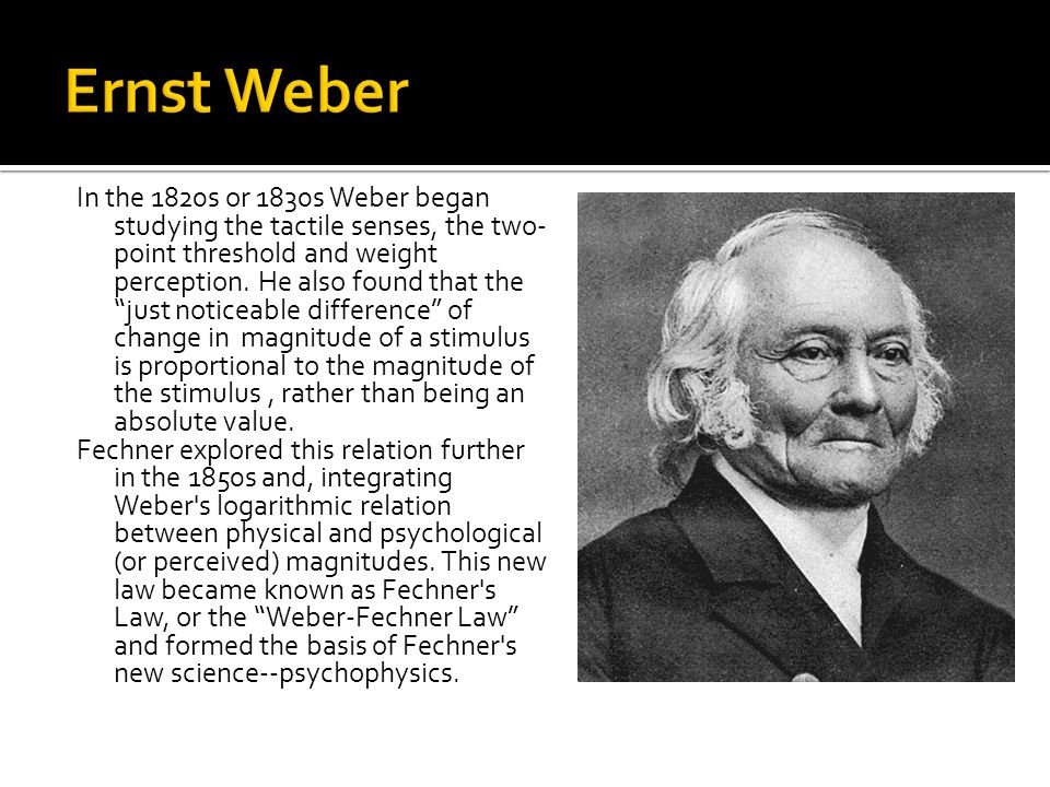 In the 1820s or 1830s Weber began studying the tactile senses, the two- point threshold and weight perception.