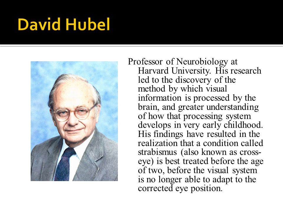 Professor of Neurobiology at Harvard University.