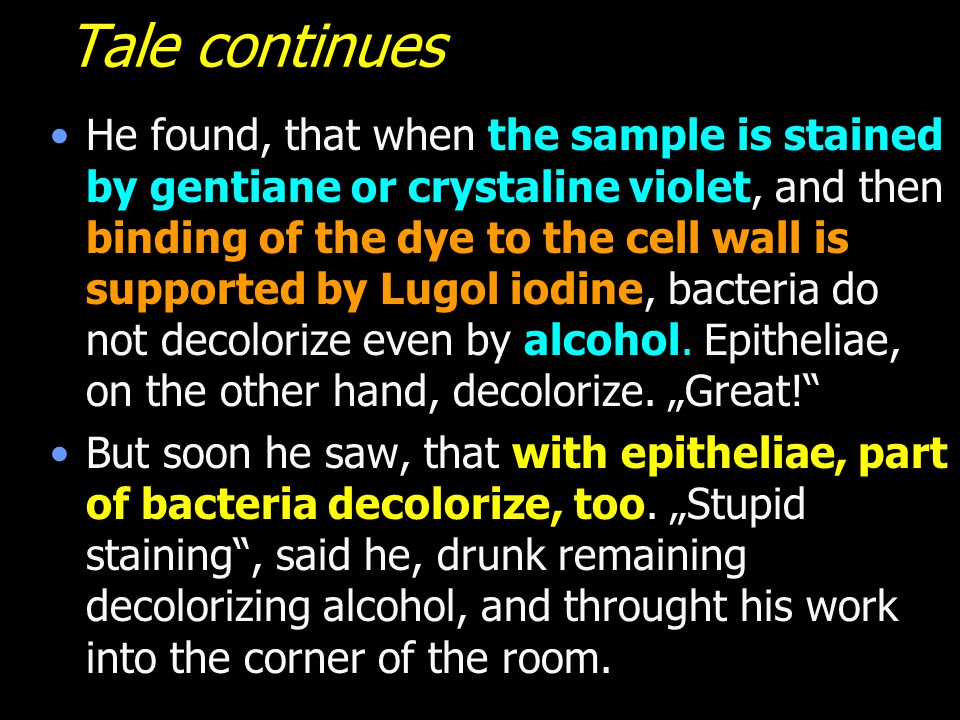 Tale continues He found, that when the sample is stained by gentiane or crystaline violet, and then binding of the dye to the cell wall is supported b