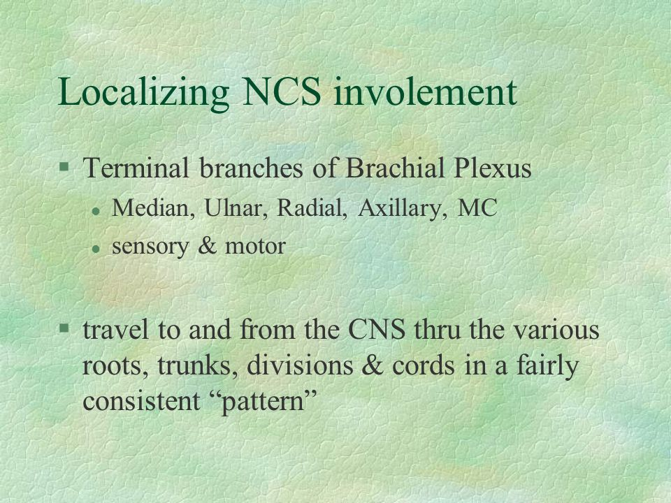 Localizing NCS involement §Terminal branches of Brachial Plexus l Median, Ulnar, Radial, Axillary, MC l sensory & motor §travel to and from the CNS th