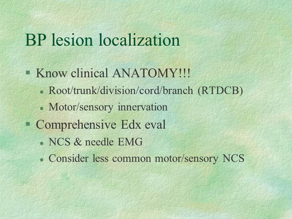 BP lesion localization §Know clinical ANATOMY!!! l Root/trunk/division/cord/branch (RTDCB) l Motor/sensory innervation §Comprehensive Edx eval l NCS &