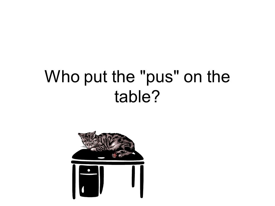 Who put the pus on the table