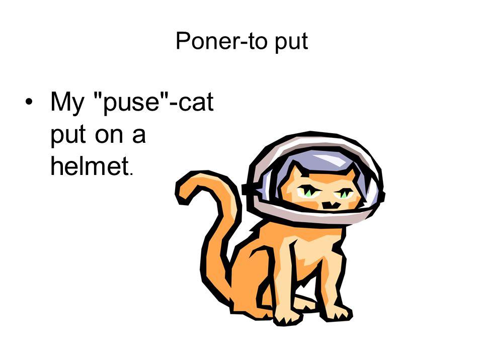 Poner-to put My puse -cat put on a helmet.