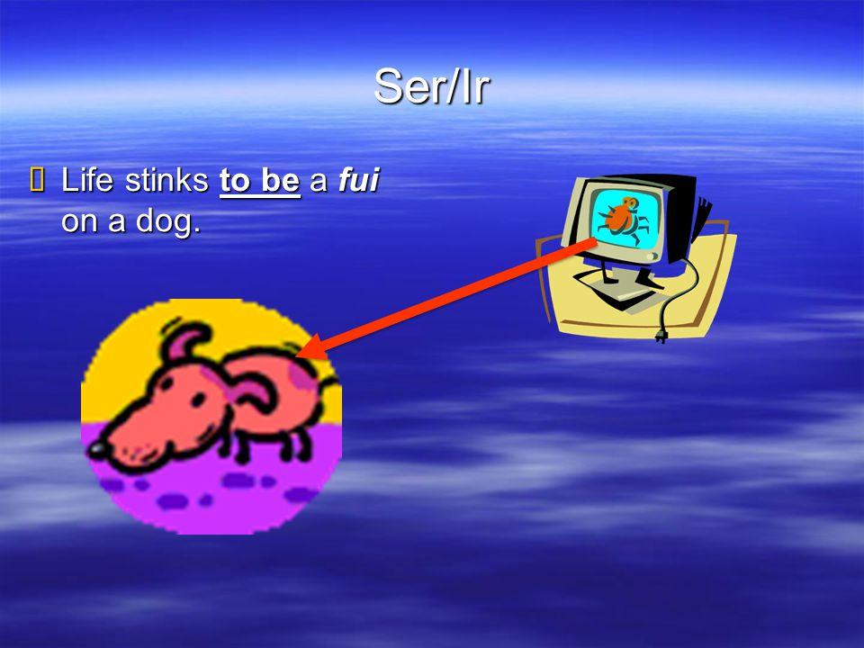 Ser/Ir  Life stinks to be a fui on a dog.