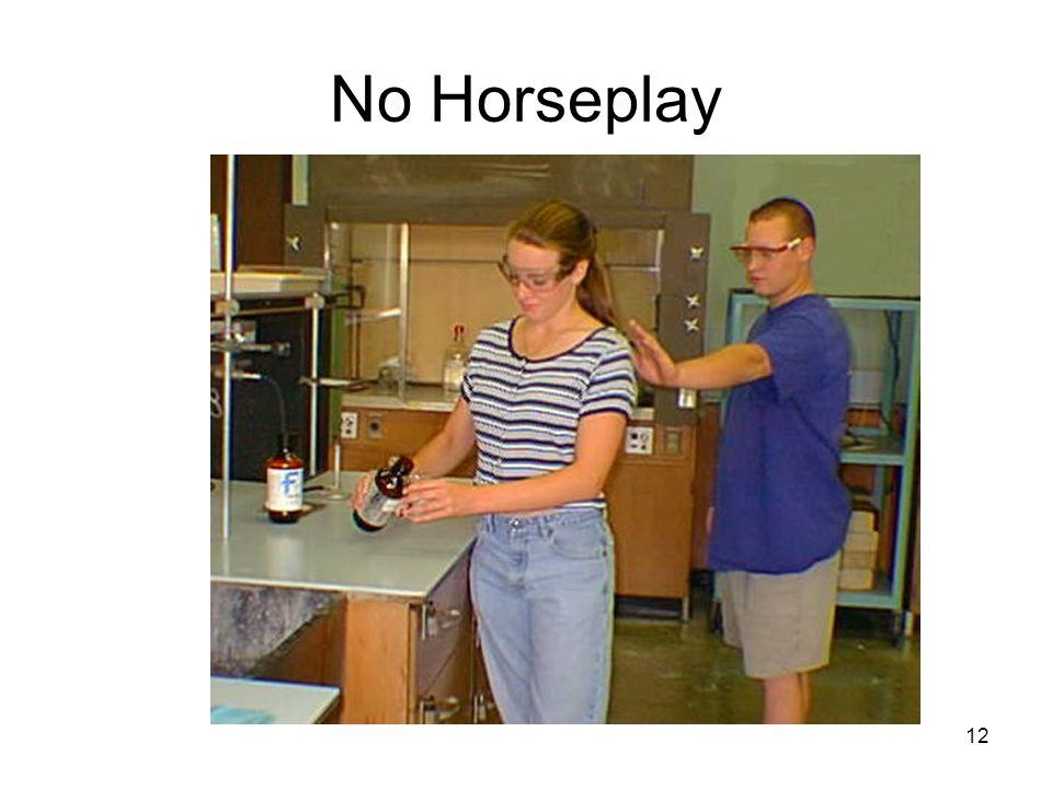 No Horseplay 12