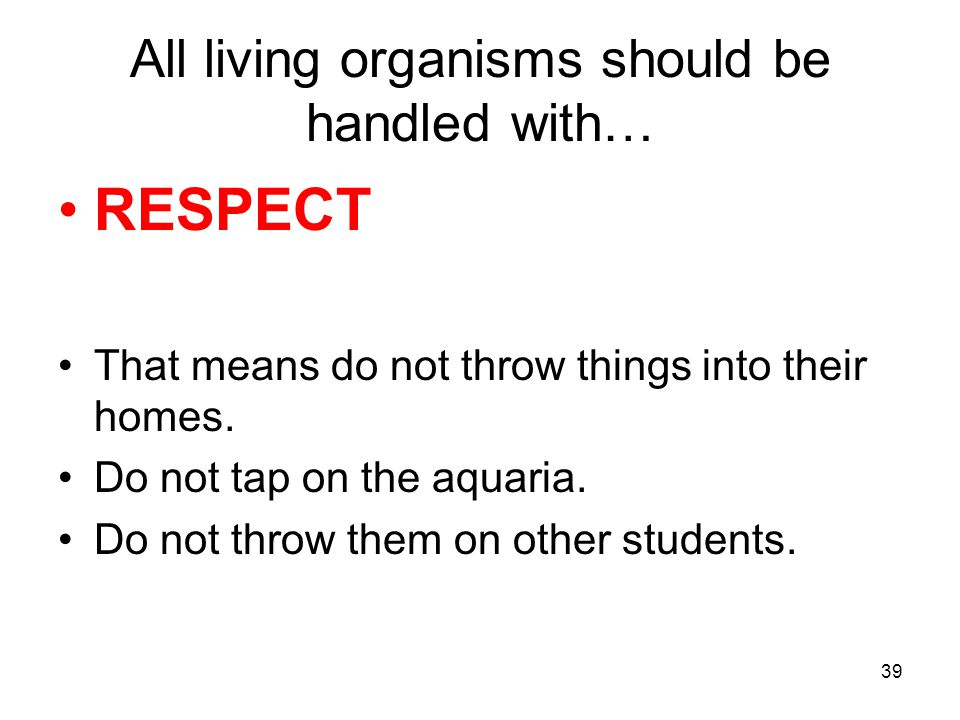 All living organisms should be handled with… RESPECT That means do not throw things into their homes.