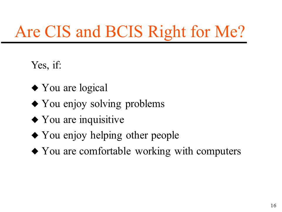 16 u You are logical u You enjoy solving problems u You are inquisitive u You enjoy helping other people u You are comfortable working with computers