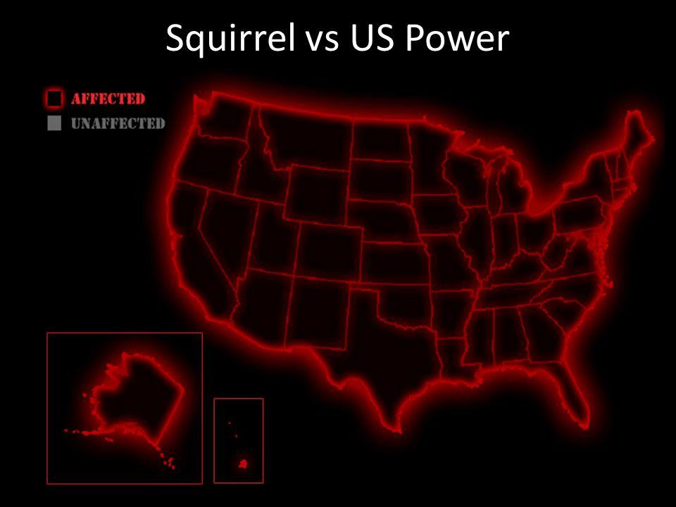 Squirrel vs US Power