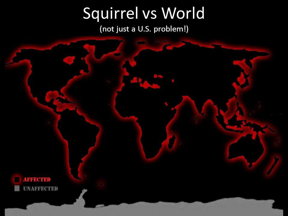 Squirrel vs World (not just a U.S. problem!)