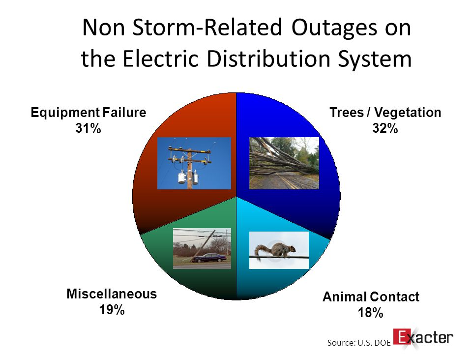 Non Storm-Related Outages on the Electric Distribution System Trees / Vegetation 32% Animal Contact 18% Miscellaneous 19% Equipment Failure 31% Source