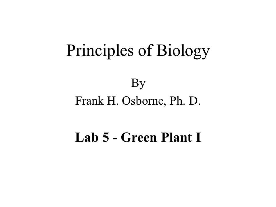 Principles of Biology By Frank H. Osborne, Ph. D. Lab 5 - Green Plant I