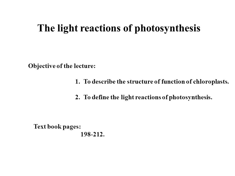 The light reactions of photosynthesis Objective of the lecture: 1. To describe the structure of function of chloroplasts. 2. To define the light react