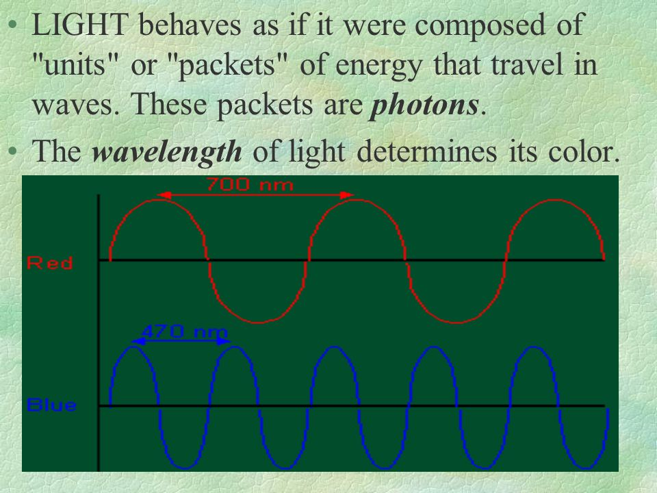 LIGHT behaves as if it were composed of