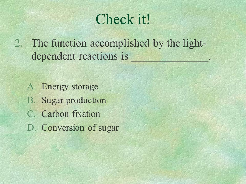 Check it! 2.The function accomplished by the light- dependent reactions is ______________. A.Energy storage B.Sugar production C.Carbon fixation D.Con