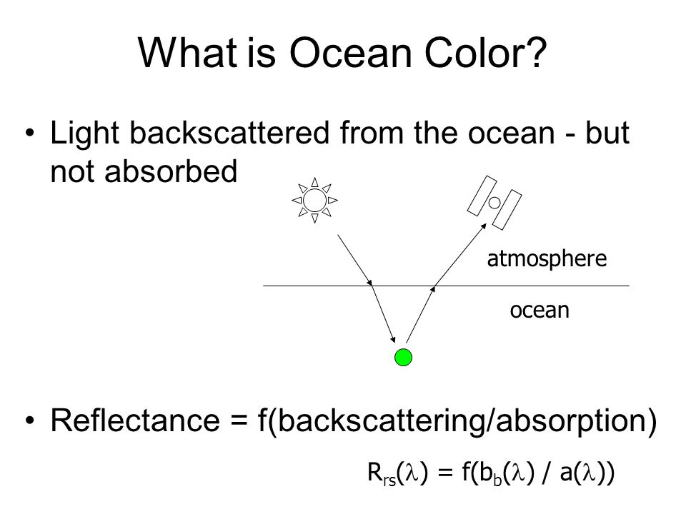 What is Ocean Color.