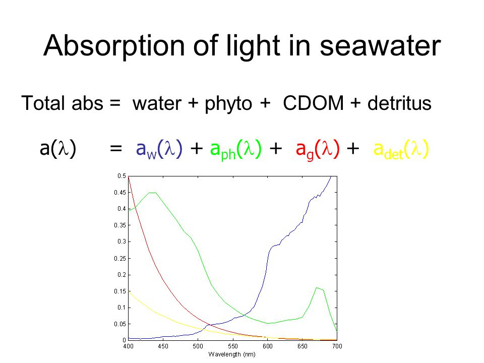 Absorption of light in seawater Total abs = water + phyto + CDOM + detritus a( ) = a w ( ) + a ph ( ) + a g ( ) + a det ( )
