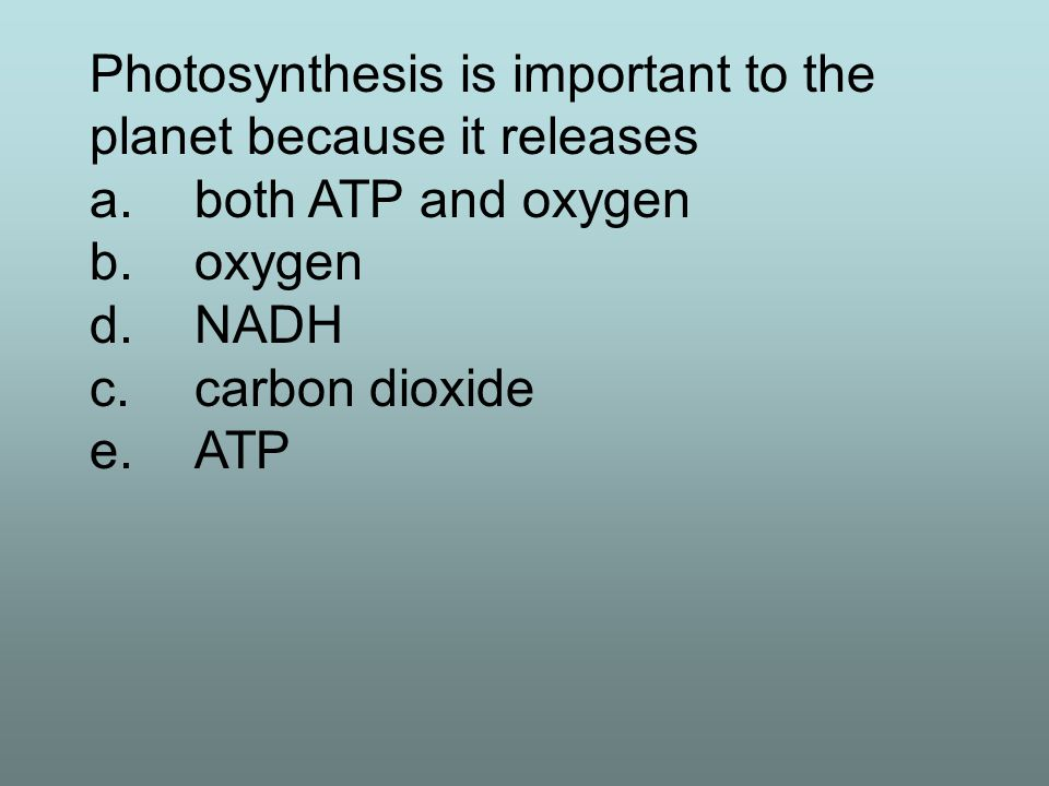 Photosynthesis is important to the planet because it releases a.both ATP and oxygen b.oxygen d.NADH c.carbon dioxide e.ATP