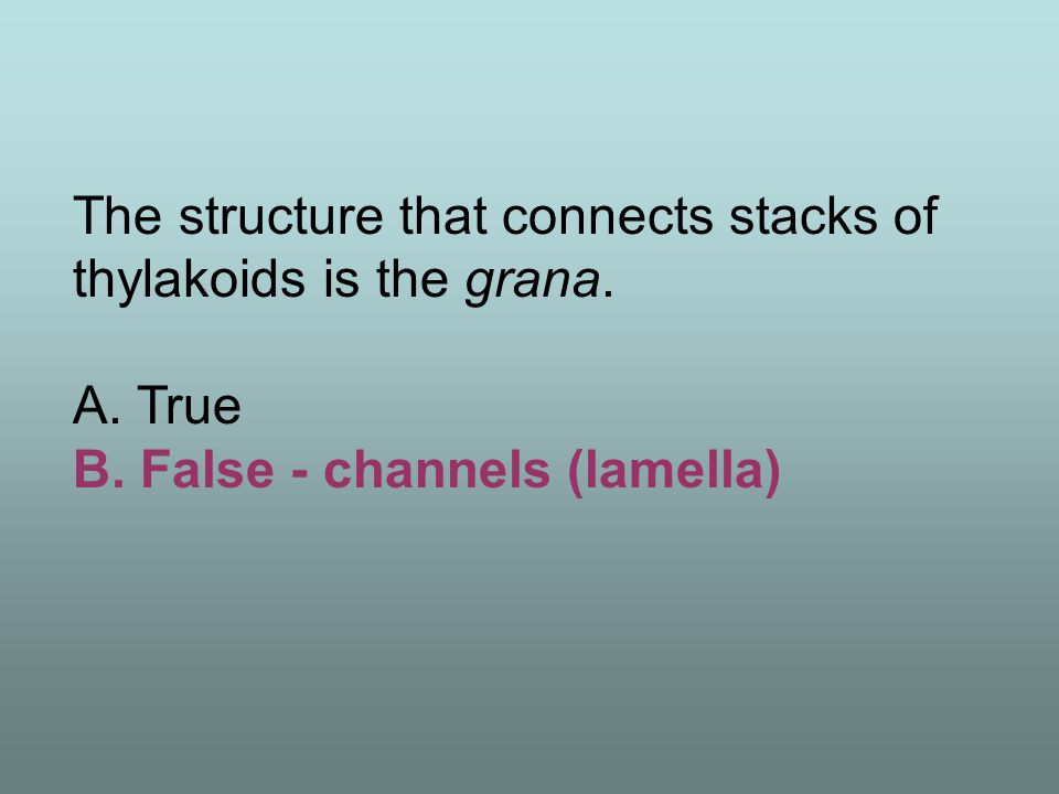 The source of electrons in photosynthesis is light. A. True B. False