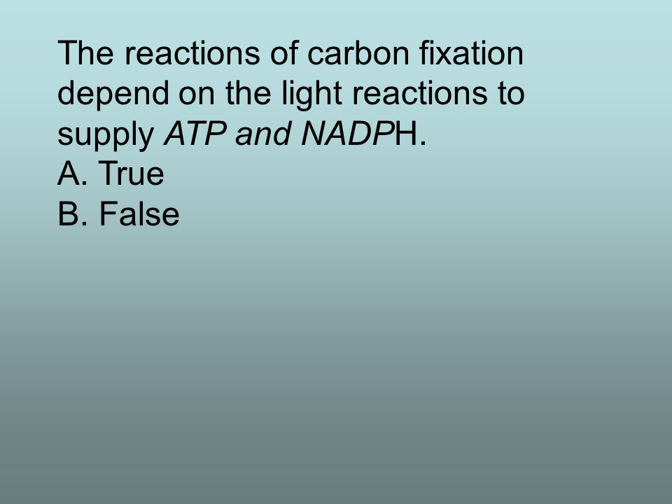 Photon energy, captured by chlorophyll a, is transferred as chemical energy to a.carbon dioxide b.glucose c.other chlorophylls d.carotenoids e.a series of hydrogen acceptors