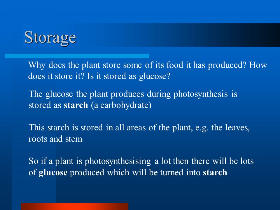 Products The products of photosynthesis are glucose and oxygen.