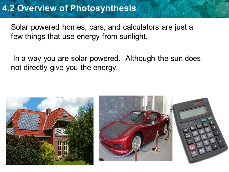 4.2 Overview of Photosynthesis How do we get our chemical energy?