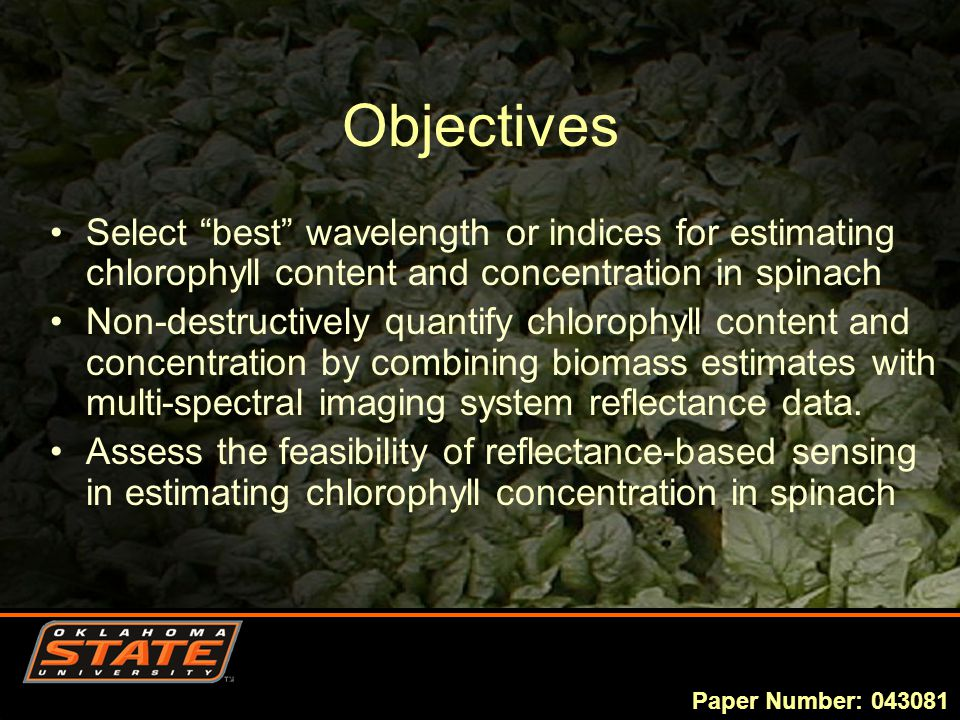 Objectives Select best wavelength or indices for estimating chlorophyll content and concentration in spinach Non-destructively quantify chlorophyll content and concentration by combining biomass estimates with multi-spectral imaging system reflectance data.
