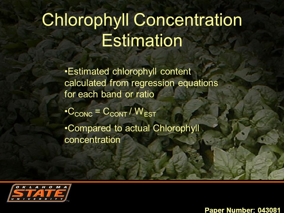 Chlorophyll Concentration Estimation Paper Number: 043081 Estimated chlorophyll content calculated from regression equations for each band or ratio C CONC = C CONT / W EST Compared to actual Chlorophyll concentration